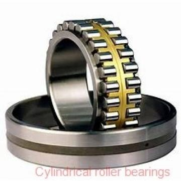 80mm x 125mm x 22mm  SKF n1016ktnha/hc5sp-skf Cylindrical Roller Bearings