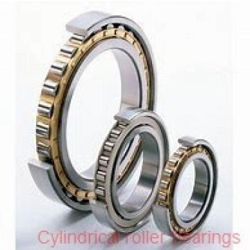 80mm x 125mm x 34mm  SKF nn3016tn/sp-skf Cylindrical Roller Bearings